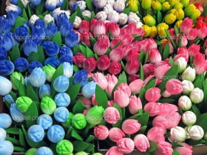 Different Colours of Flowers