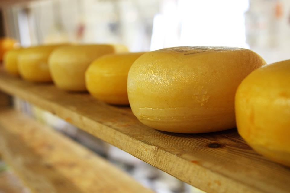 cheese-