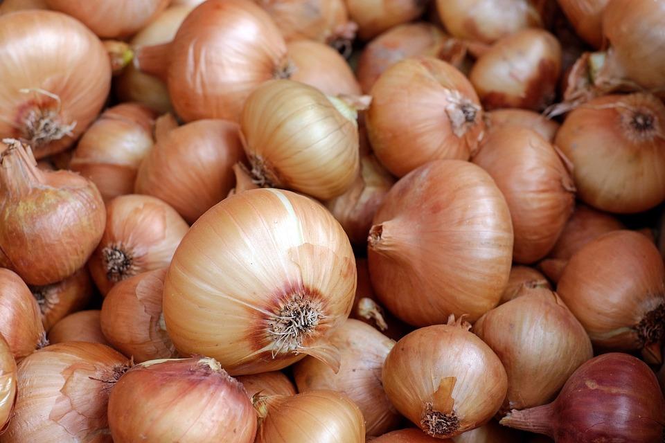 onions-