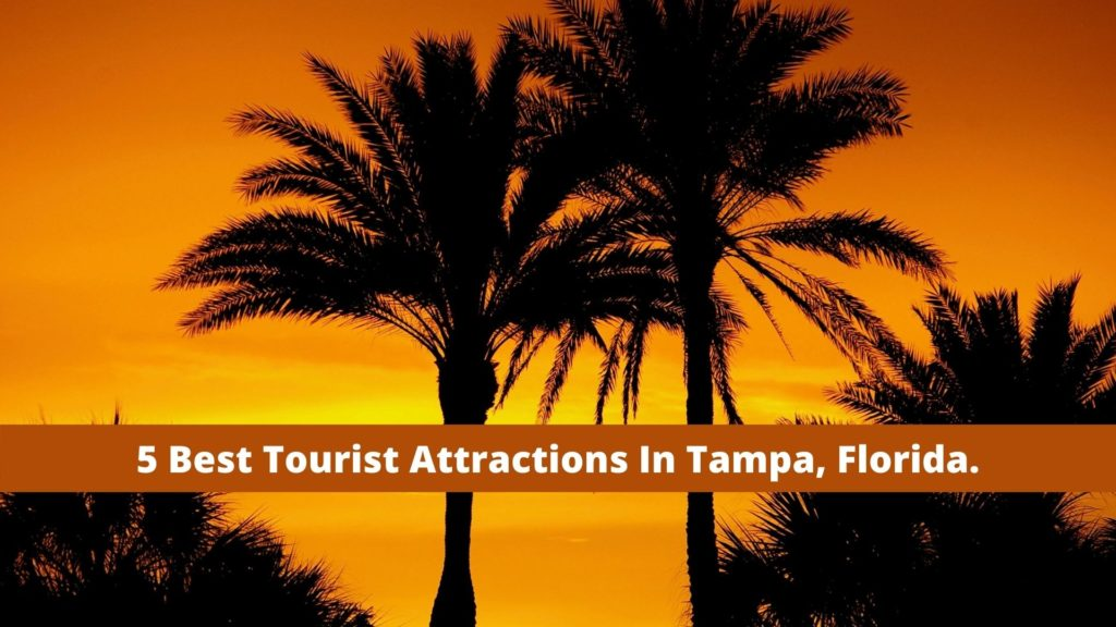 5 Best Tourist Attractions In Tampa, Florida.