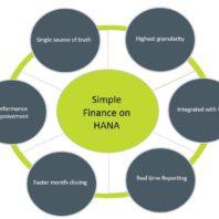 SAP Simple Finance Training
