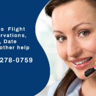 contact Spirit Airline