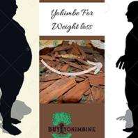 Using Yohimbine HCL For Weight Loss   https://buyyohimbine.com/